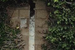 Block Wall Bee Removal