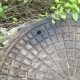 Man Hole Cover Bee Removal